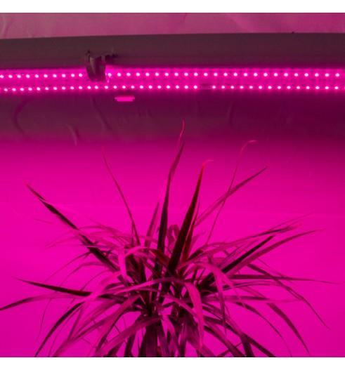 Фито светильник Full Spectrum 36 W